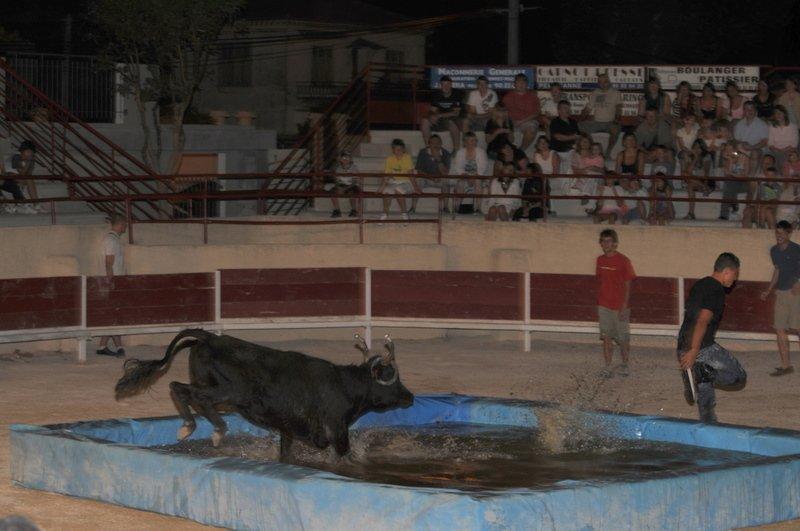 gardianne de taureau sous vide